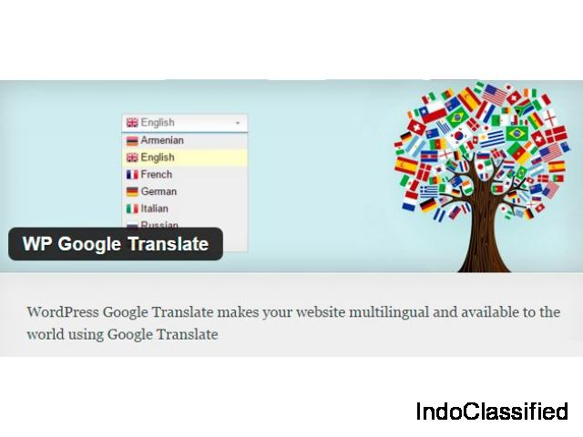 WP Google Translate – WordPress Premium Translate Plugin