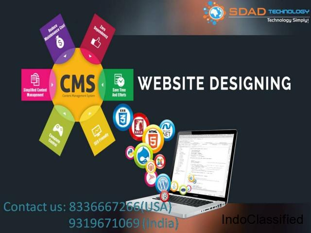 Web Designing Company 9319671069 In Noida: SDAD Technology