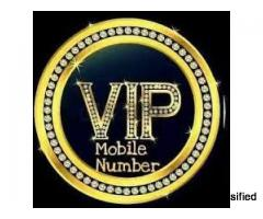 Family Mobile Numbers in Pune