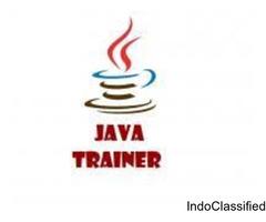 Java Trainer