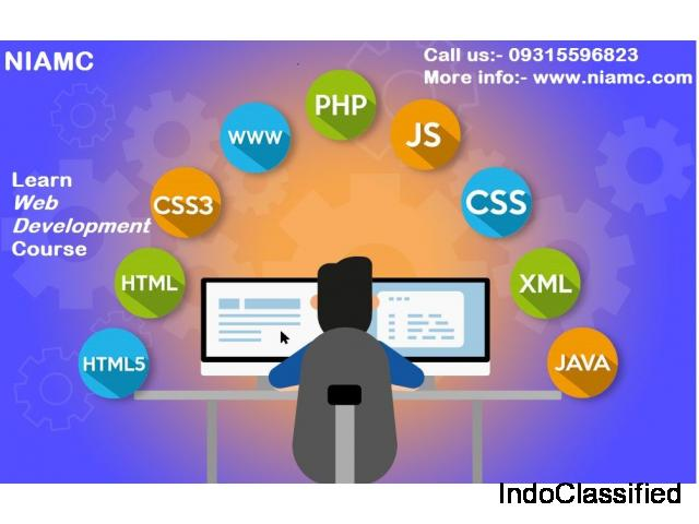 Best  Web Development Training Institute In Delhi