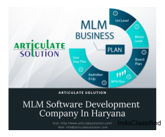 MLM Software Development Company In Haryana