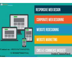 Top Web Development Company In Noida  Cost -Effective Solution