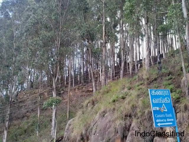 Best Hillview Plots for Sale with Loan arrangements at Kodaikanal