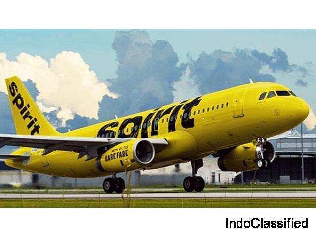 Get latest Spirit Airlines Information by dialing +1-877-244-2364