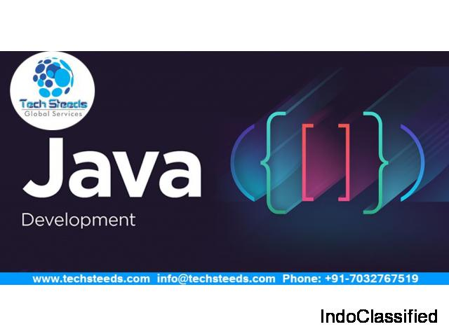 Java web Development Services in Hyderabad