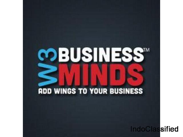 Professional Website Design And SEO Company In Lucknow - W3BMINDS