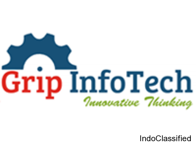 Web design & development services Noida - Grip Infotech