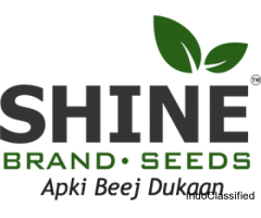 Buy Hybrid Seeds | Vegetable, Fruits & Flower Seeds- Shine Brand Seeds