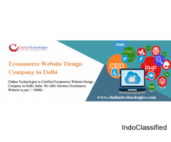 Low Cost Ecommerce Website Design Company in Delhi | Get Business Online‎‎