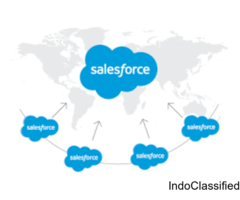 Salesforce Development Videos by using Batch Apex