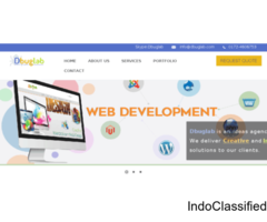 Web Development Company in Chandigarh