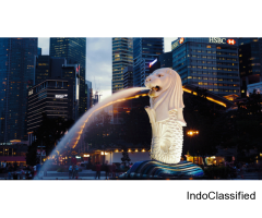 Book Singapore Malaysia tour package with cruise from India