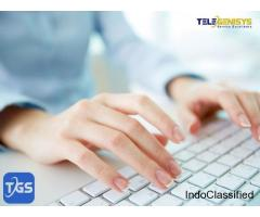Data Entry Services | Telegenisys Inc