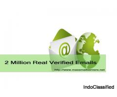 Dedicated SMTP Server | Bulk Email Service | Buy SMTP