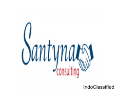 Santyna consulting | Best Consulting service | National Service Partner in India