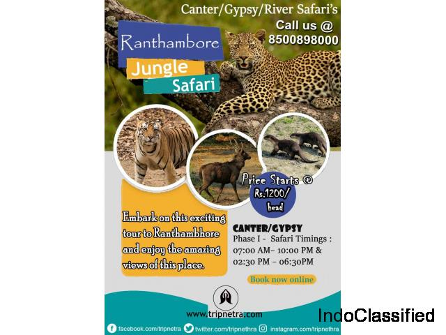 Book Your Holiday Trip Ranthambore  Jungle Safari  At Tripnetra