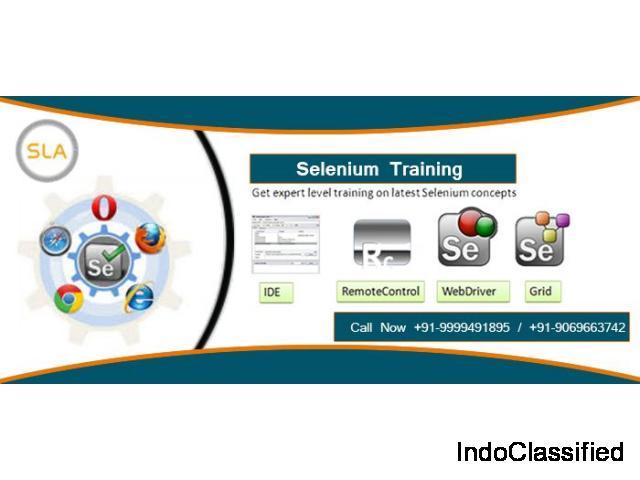 Selenium Training Course in Delhi | Selenium Training Institute in Delhi