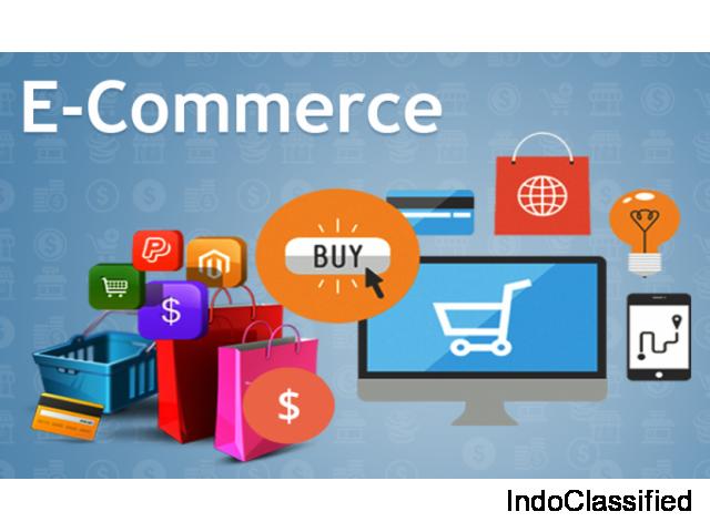 Ecommerce Website Development Company in Noida