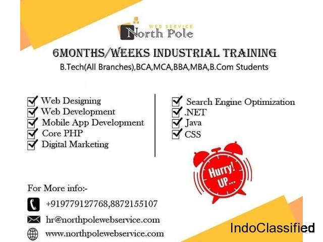 NorthPole Web Service