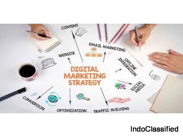 Avail digital marketing services from the experts