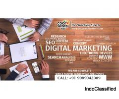 Colorwavesmedia-Top  Digital Marketing Agency in Hyderabad