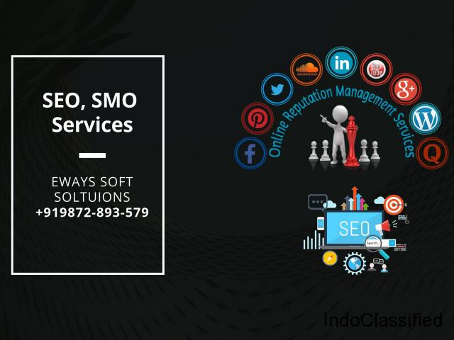 Best Web Designer in Delhi| Digital Marketing Services in Delhi- Eways Soft Solutions
