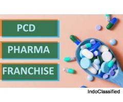PCD Pharma Franchise in Delhi - V Care Biotech