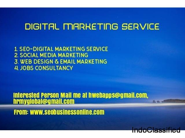 Digital Marketing Service Delhi, Digital Marketing Sonipat, SEO Office Panipat, SEO Company Karnal