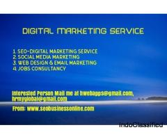 Digital Marketing Service Delhi, Digital Marketing Sonipat, SEO Office Panipat, SEO Company Karnal