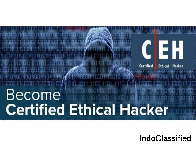Certified Ethical Hacker Training and certification