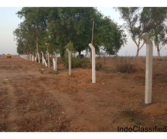 farm plots for sale at aler bi-pass ( yadhadri)