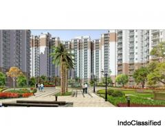 Residential 2 and 3 BHK Flats in Nirala Greenshire | Sec-2, Noida Extension