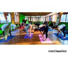 200 Hour Yoga Teacher Training - June 2019