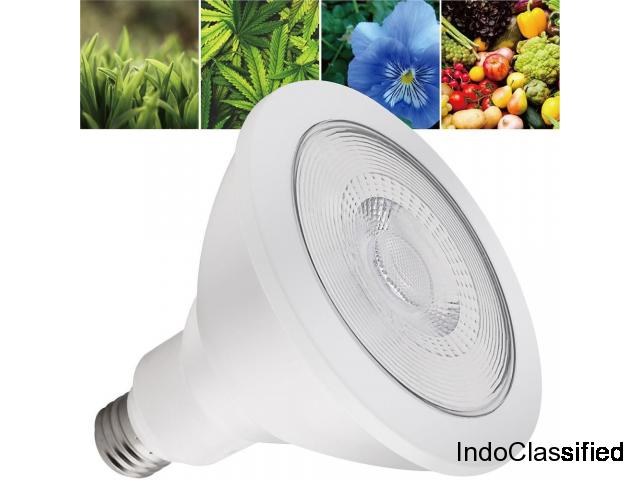 Best LED Grow Light for Indoor Plants