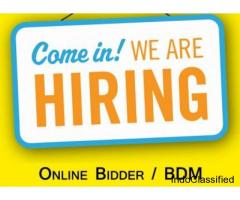 Business Development Executive (Online Bidder)