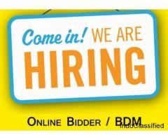 Business Development Executive (Online Bidder)
