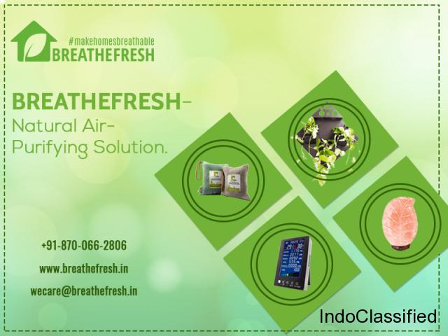 Natural Air Purifiers Solution |Breath Fresh Air Purifier