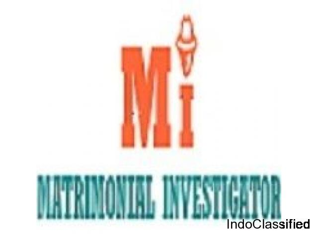 Emerging Detective Agency for Various investigation