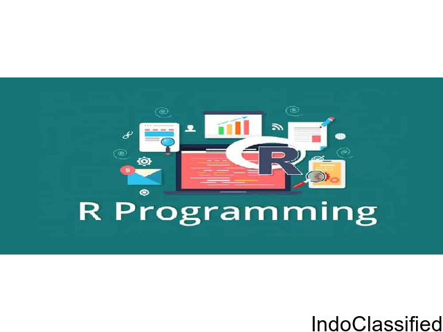 R Training and Certification Program Noida