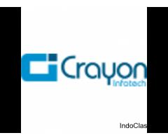 Crayon Infotech: importance of Web service