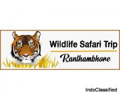 Wildlife Safari Booking