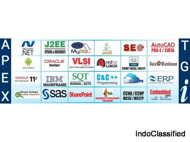 Software Testing Training in Noida – APEX TGI