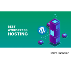 Secured wordpress Hosting Solution For A Business