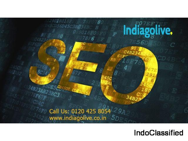 SEO services | SEO agency noida- Indiagolive