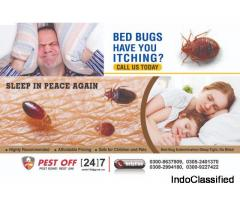 Bed Bugs Treatment in Karachi Pakistan Pest Off