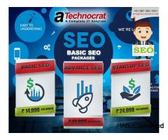 Affordable professional SEO SERVCES in DELHI