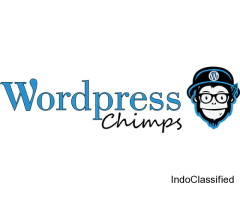 Best WordPress Theme Development Company in UK