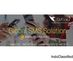 Promotional SMS, Transactional SMS & Alert SMS services