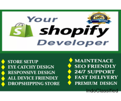 I Will Setup Automated Shopify Dropshipping Store, Shopify